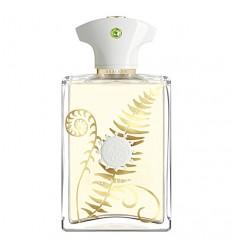 BRACKEN EDP 100ML